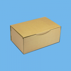 Boite postale brune 200x200x100mm
