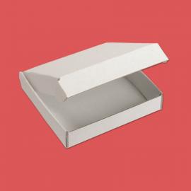 Boite postale blanche 200x100x100mm